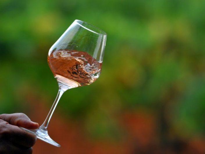 vino rosado windsor